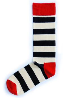 Носки Zebra